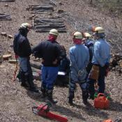 保安伐採工事