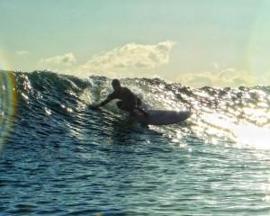 surfer desu!